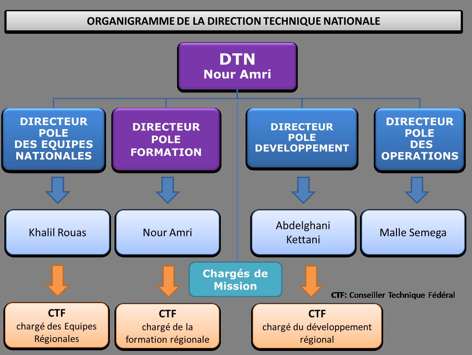 Organigramme DTN